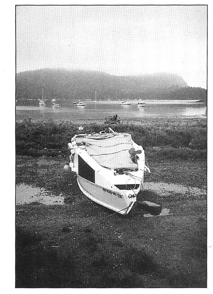 Phil Bolger Black Skimmer Boat